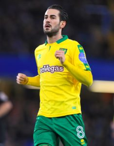 Reading slumped to a fourth successive Championship defeat at home this season as they lost 2-1 to Norwich.