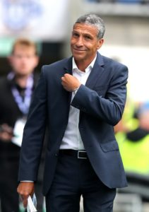 Chris Hughton believes Brighton will be the underdogs when they visit Newcastle in the Premier League on Saturday.