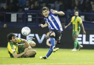 Sheffield Wednesday forward Fernando Forestieri says he is happy to stay at Hillsborough despite reports of a move.