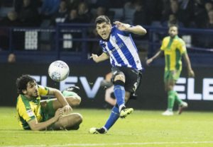 Fernando Forestieri will be available for selection as Sheffield Wednesday face Brentford at Hillsborough.