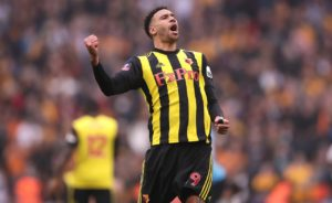 Etienne Capoue admits he does not watch football in his spare time and would miss the FA Cup final if the Hornets were not involved.