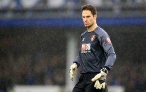 Eddie Howe says he hasn't fallen out with goalkeeper Asmir Begovic amid reports they will be searching for a new No.1 this summer.