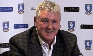Sheffield Wednesday manager Steve Bruce has played down reports claiming he is set to become Newcastle's new boss.