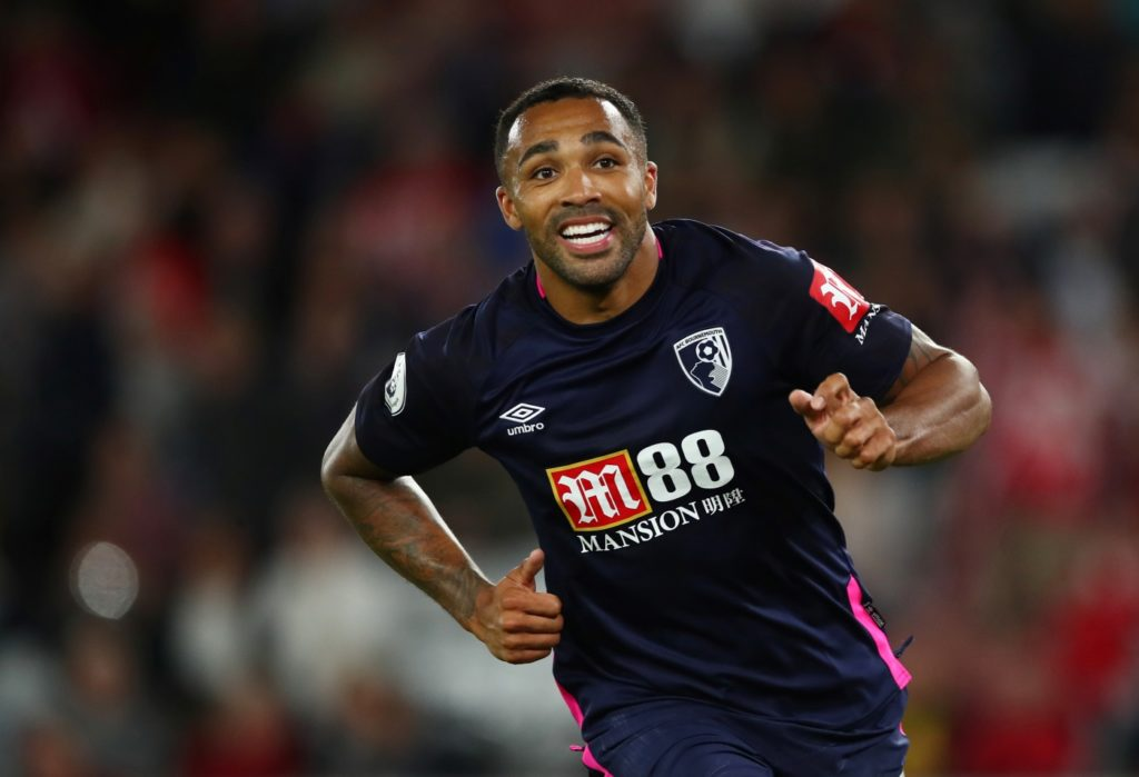Bournemouth striker Callum Wilson says he is ready to seize his opportunity at international level with England.