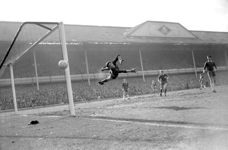 Peter Bonetti was known as the 'Cat' because of his agility
