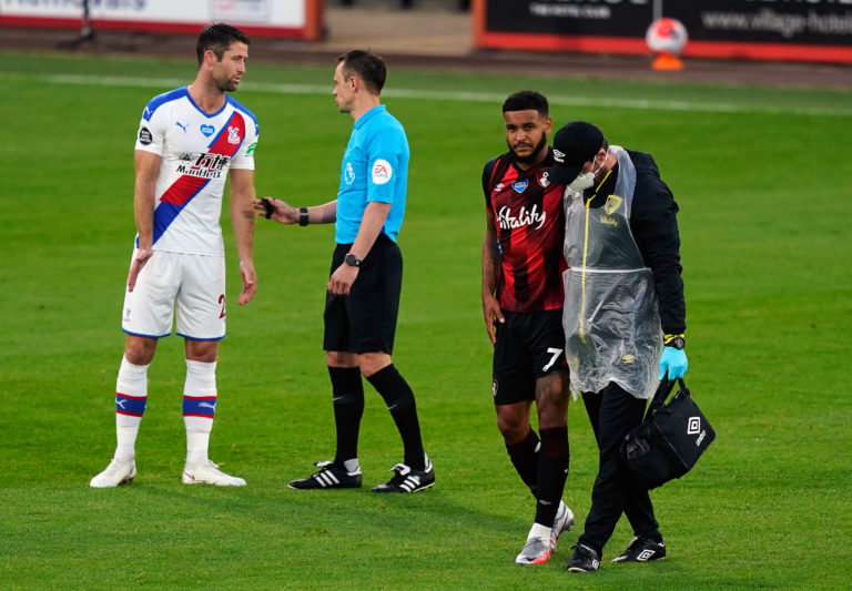 AFC Bournemouth v Crystal Palace – Premier League – Vitality Stadium
