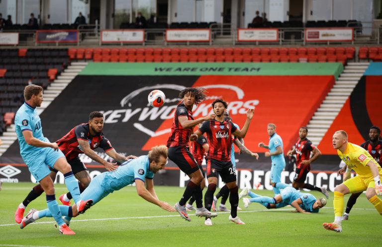 Bournemouth's Joshua King appeared to push Harry Kane in the box