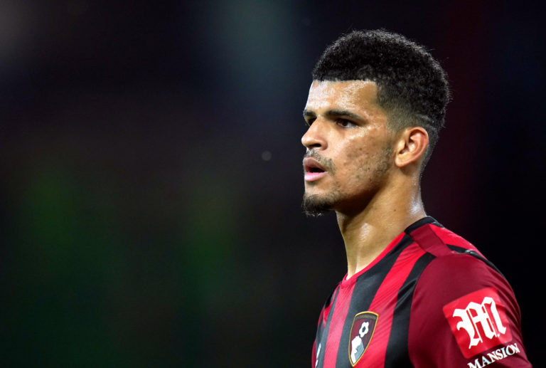 Dominic Solanke has managed just two Premier League goals for Bournemouth since a reported GBP 19million move from Liverpool
